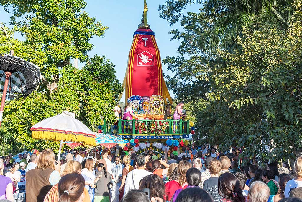 The majestic chariot travels on the leafy New Govardhana road