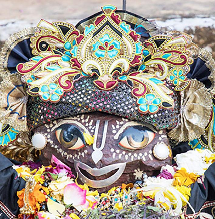 Giriraja at Govardhana Puja 2017, expertly dressed by Dandakaranya dasa.